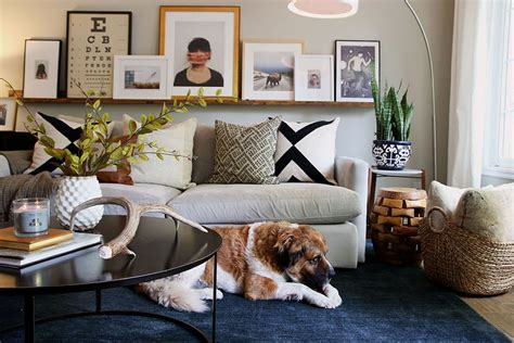 Cheap Rugs For Living Room - 5 big area rugs for cheap and the one we chose for the