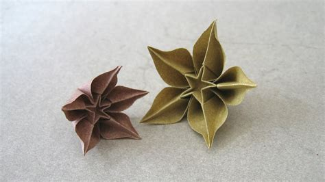 origami carambola flowers carambola flower www pixshark images galleries