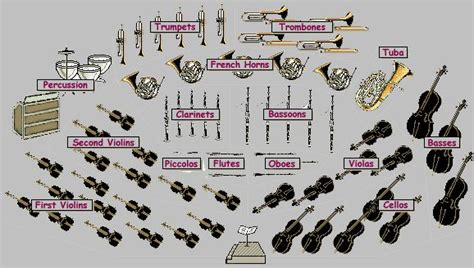 orchestra sections orchestra sections instruments reference section pinterest