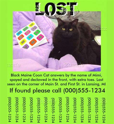 Printable Lost Pet Flyer