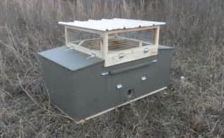 game bird farm game bird hatchery breeders and suppliers of quail coturnix chukars pheasant