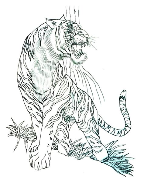 tiger tattoo outline designs animal images designs