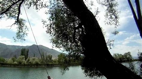 rch swing the mona rope swing