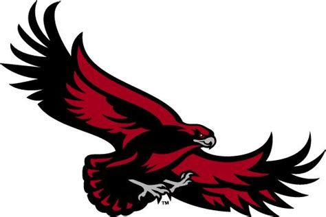 eagle rubber st st joseph s hawks alternate logo 2001 flying hawk
