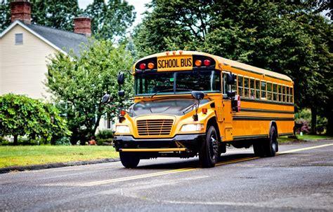 imagenes autobus escolar por qu 233 los autobuses escolares americanos son gigantes y
