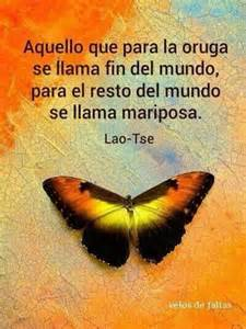 bello fondo de mariposas con una mensaje de reflexin para vuelo de mariposas frases motivadoras pinterest laos