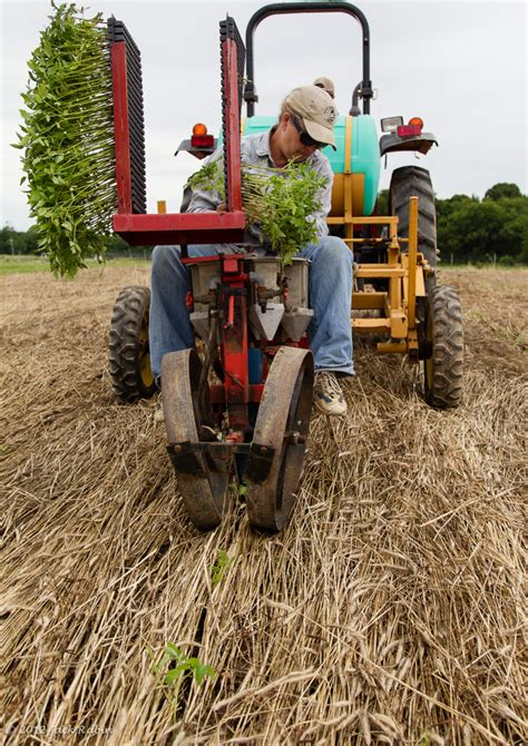 No Till Planter Attachments by Best No Till Planter Mejorstyle