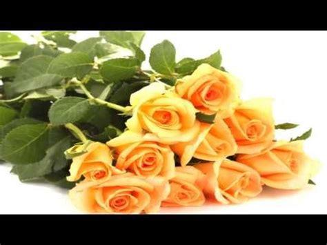 lindas imagenes de fantasia y mas para compartir rosas y bellas flores quot lindas im 225 genes de fantas 237 a y mas