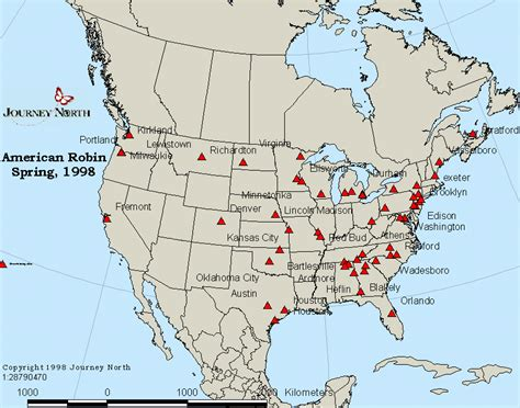 top 28 migration of robins american robin migration