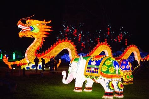 dragon house east west london to host first magical lantern festival to celebrate chinese new year
