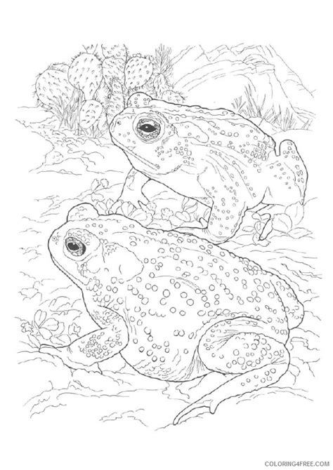 realistic coloring pages for adults hibian pages realistic coloring pages