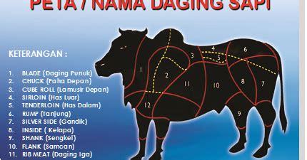 peternakan  jenis bagian daging sapi  manfaatnya