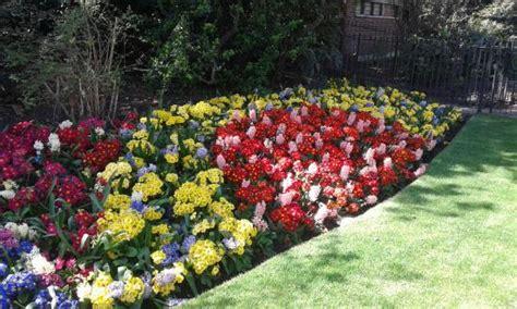 aiuole fiorite immagini le aiuole fiorite foto di st s park londra