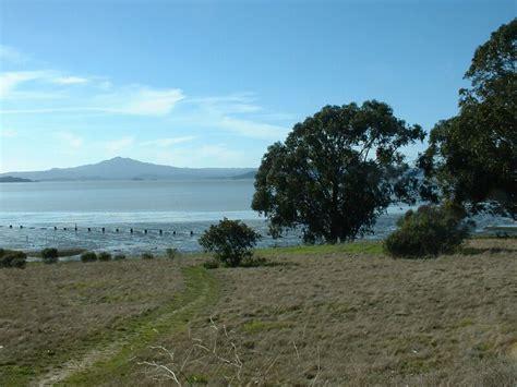 point pinole regional shoreline wikipedia