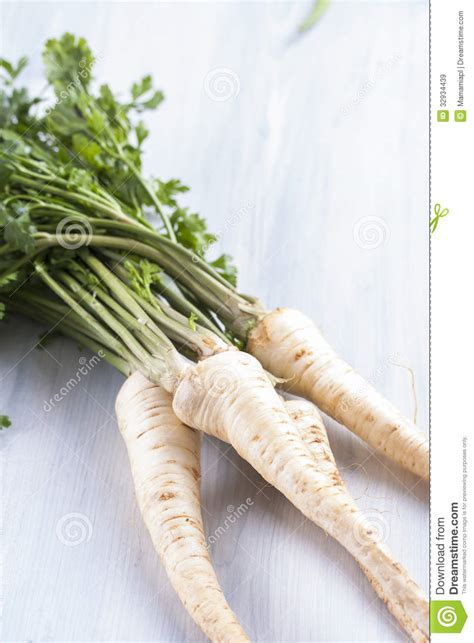 edible root vegetables vegetables royalty free stock images image 32934439