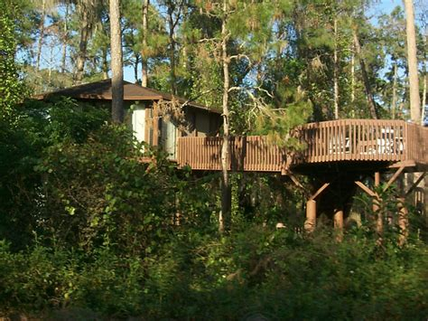 treehouse villas at saratoga springs 7 treehouses in florida that awaken your inner child