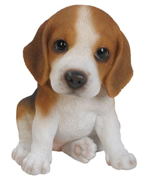 how is a a puppy pet pals beagle puppy resin garden ornament 163 9 99 garden4less uk shop