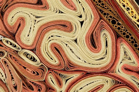 anatomical cross sections made with quilled paper by