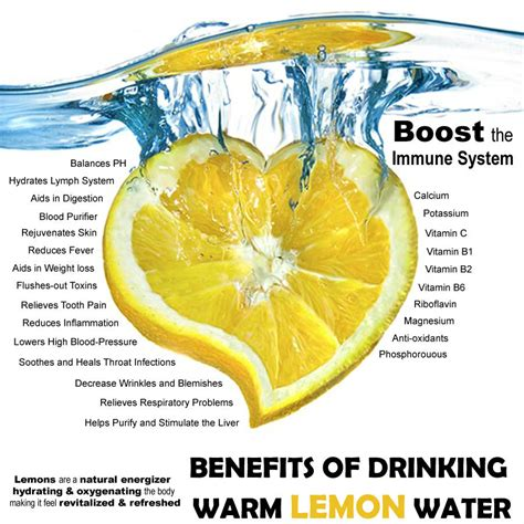 Warm Lemon Water Detox Benefits by Health Benefits Of Lemons Paula Owens