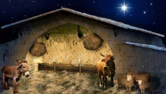 nativity stable driverlayer search engine