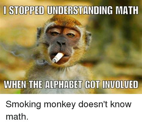 Monkey Face Meme - 15 funny and adorable monkey memes