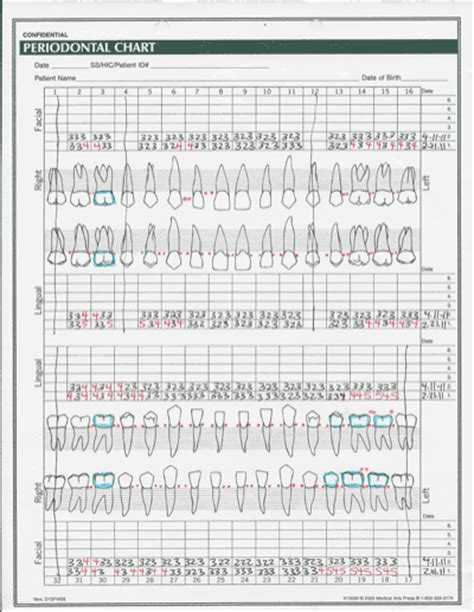 periodontal chart template printable perio charting form quotes