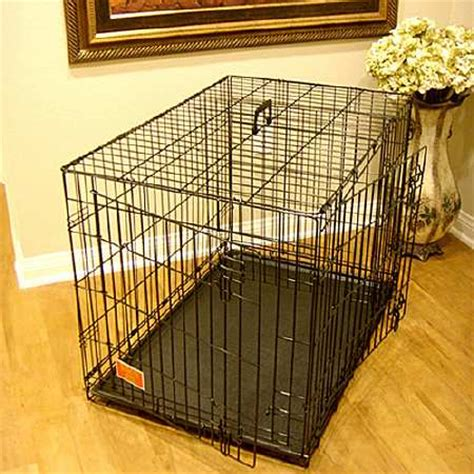 36 inch crate majestic pet products single door folding crate cage medium 36 inch walgreens