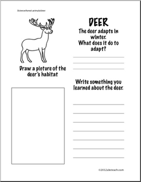 1 Grade Science Worksheets by 16 Best Images Of Animal Science Printable Worksheets 1st