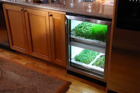 grow   microgreens indoor year  kcet