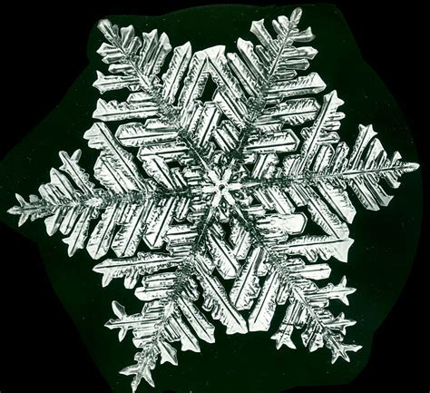 snowflake bentley snowflakes the extraordinary micro photographs of winter