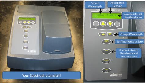 design an experiment using the spectrophotometer chem 125 experiment ii