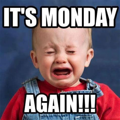 i it s monday but its monday again pictures photos and images for
