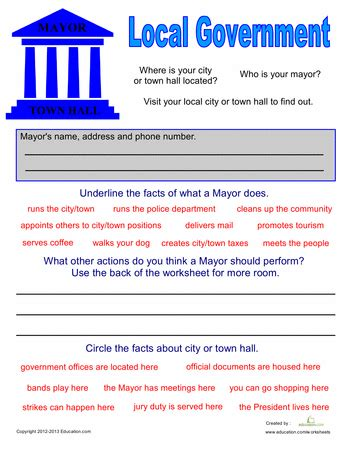 local government for open government transparency