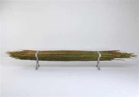 bamboo bench press promisedesign