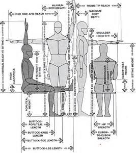 Anthropometric Measurements For Interior Design Anthropometric Body Measurements Anthropometry Pinterest
