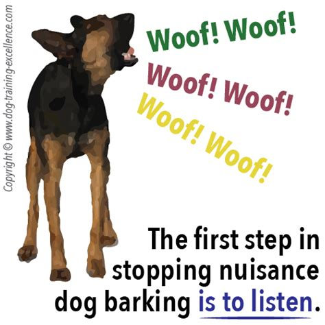 puppy barking sound a barking in alarm learn how to stop it with positive methods