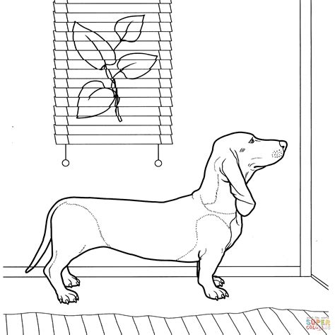 coloring pages of wiener dogs dachshund coloring page coloring pages weenie