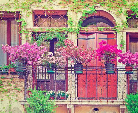 giardino sul balcone quali piante e fiori per il giardino sul balcone