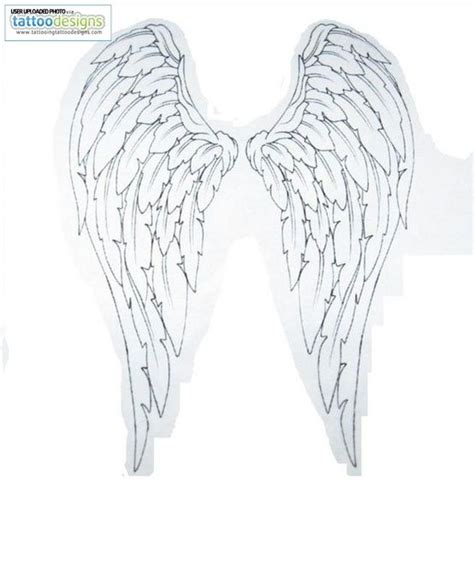 Wing Top En 32 best wings 2 images on designs ideas and wing