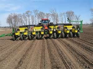 pahl s of the year sweet corn just planted pahl s