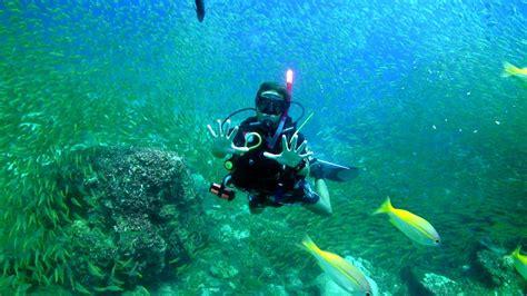 dive phuket padi idc thailand scuba diving instructor courses in