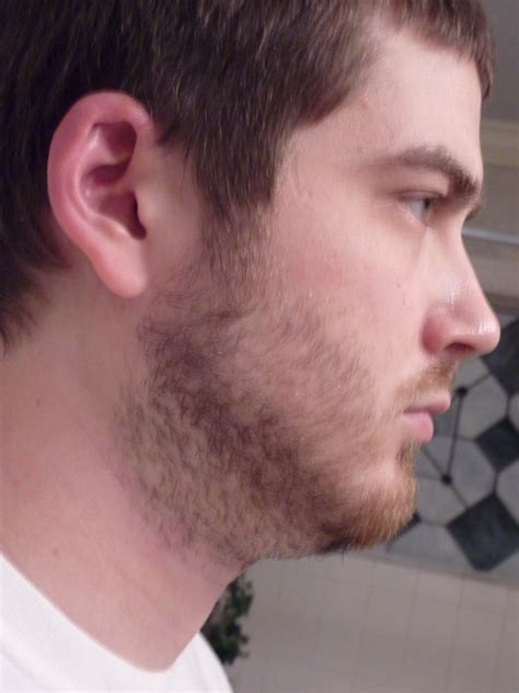 beard styles for double chin beard style for improve double chin short hairstyle 2013