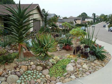 Cactus Succulent And Cacti Landscape Pinterest Cactus Garden Design Ideas