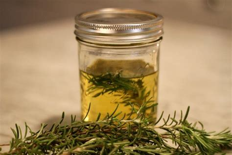 Medicinalcosmetic Uses Of Rosemary by Benefits Of Rosemary