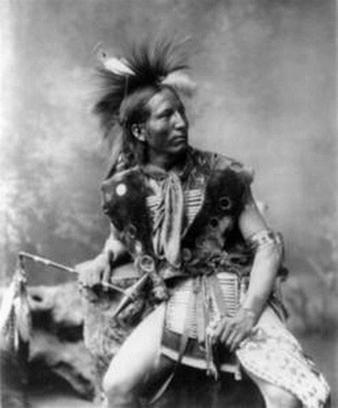 Sioux Also Search For Sioux Lakota Cowboys Indians