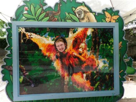 hogle zoo boo lights utah s hogle zoo family destination visit salt lake city
