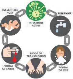 chain of infection introduction