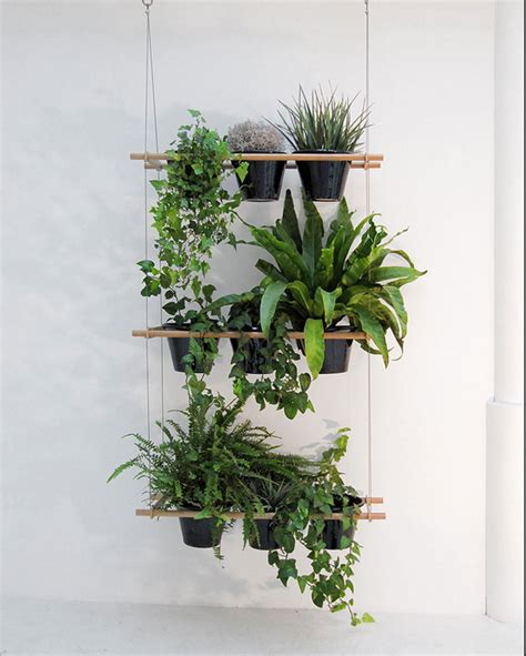 plants that drape over walls living small a hanging window box planter gardenista