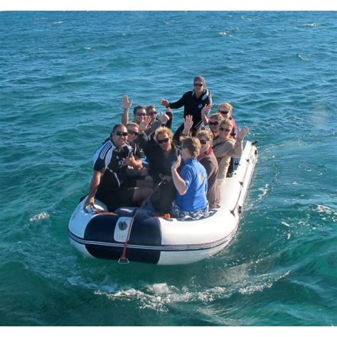 inflatable boat perth searano 4700mm inflatable boat with aluminium deck