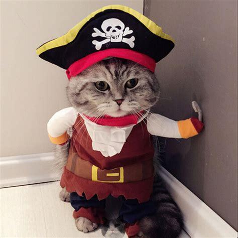 aliexpress buy cat costume pirate suit cat